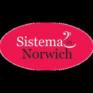 Sistema In Norwich @ Wensum Junior School | England | United Kingdom